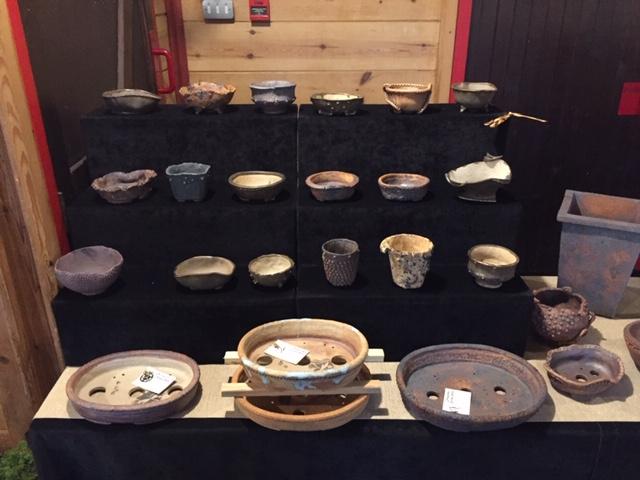 Dragonfly Bonsai Pots