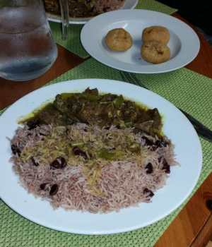 a plate of rice and curried meat