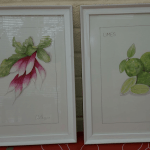 Limes and radishes paintings