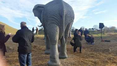 elephant sculpture swindon rear