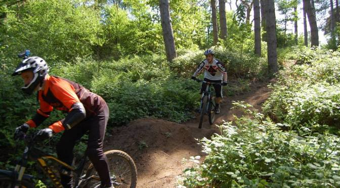 Places to ride: Badbury Clump