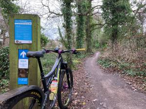 Get (Back) Into Mountain Biking Part 1 - Ashton Court @ Ashton Court
