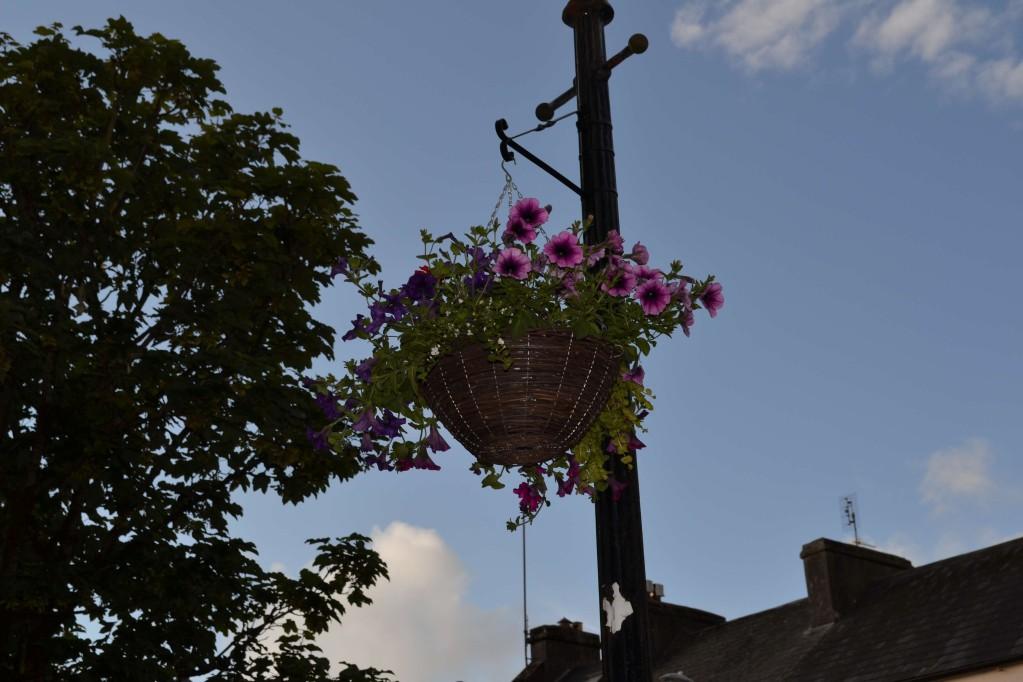 Street Hanging Basket