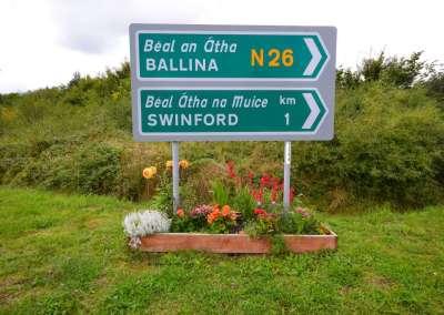 Swinford Bypass Flower Beds