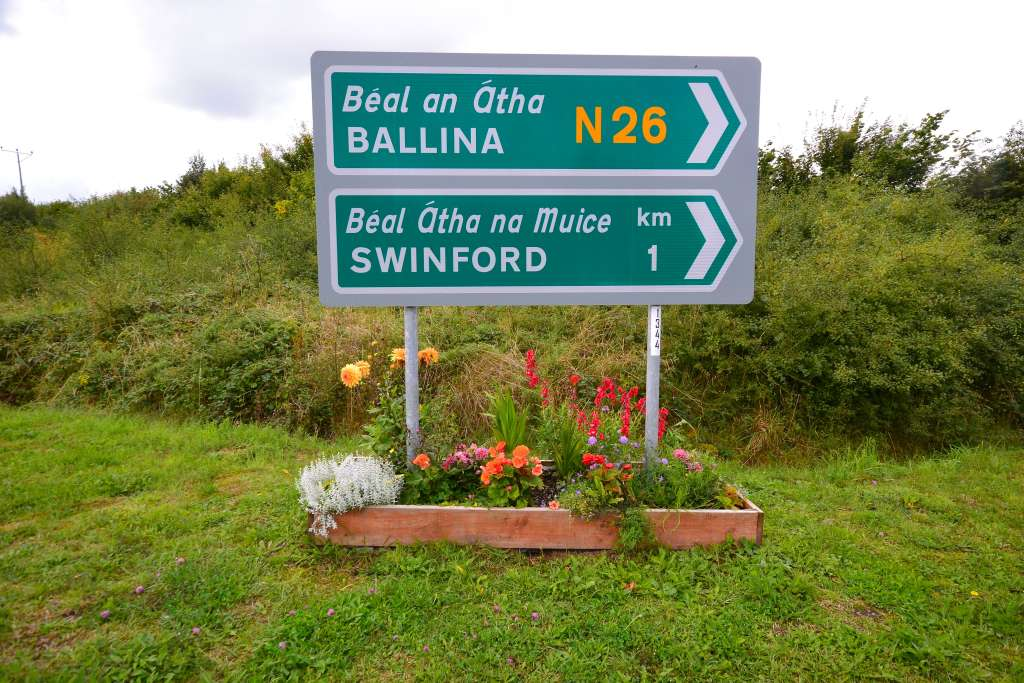 Swinford by pass flower beds