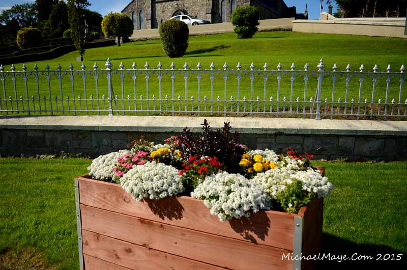 Swinford flower planters