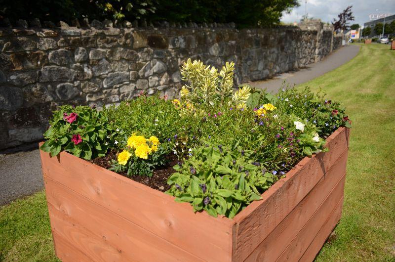 Kiltimagh road planters MAY_6581