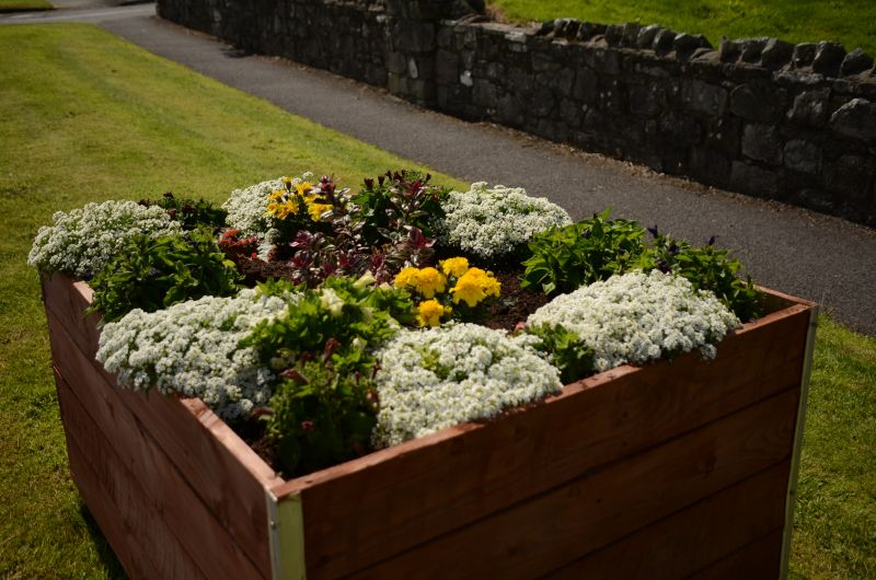Kiltimagh road planters MAY_6585