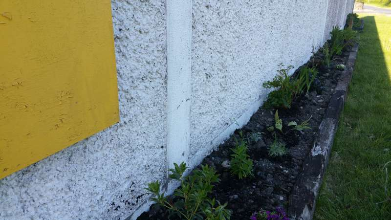 Swinford ESB wall flowerbed-20160515_190425