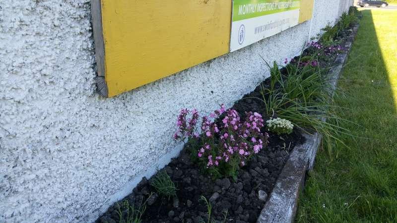 Swinford ESB wall flowerbed-20160515_190448