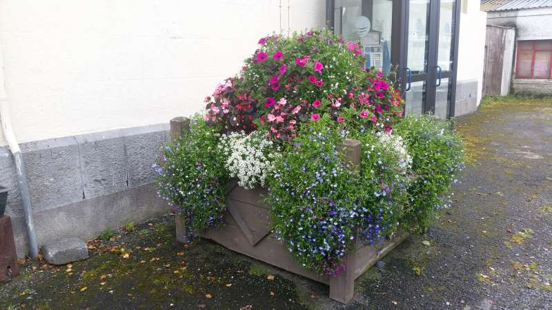 swinford-courthouse-planter-20161009_125256