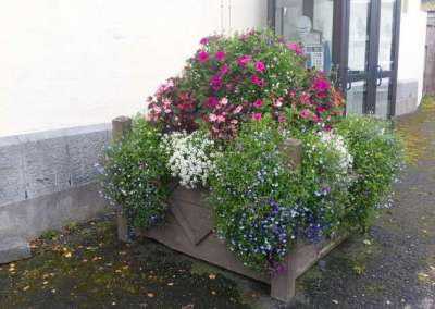 Swinford Courthouse Planter