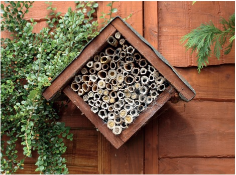 how to build a bee hotel