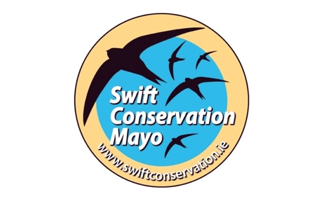 Swifts Walk & Talk