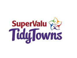 2021 National Tidy Towns Competition Launched