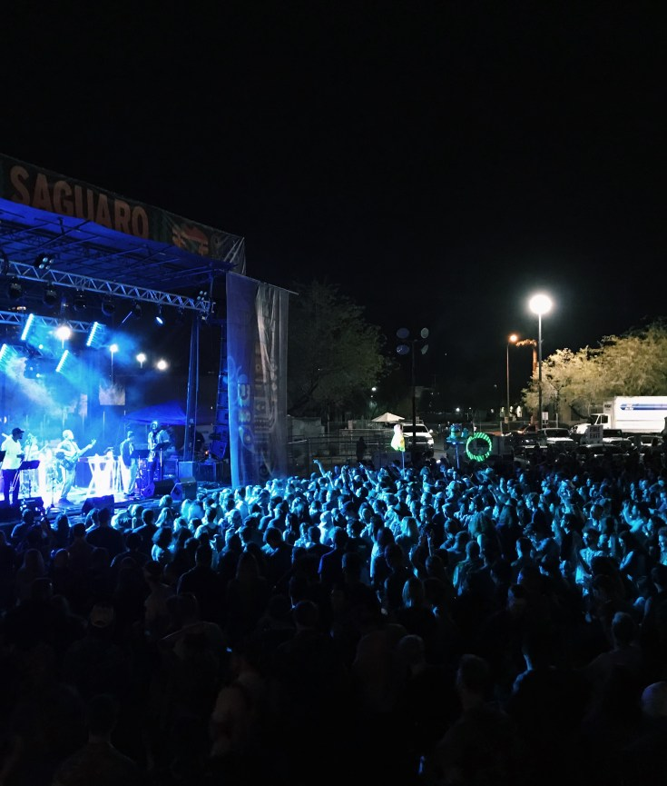 Crowd at McDowell Mountain Music Festival (M3Fest)