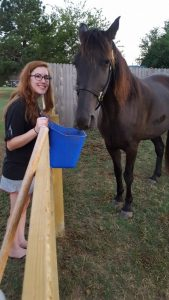Horse Adopted - Elvis