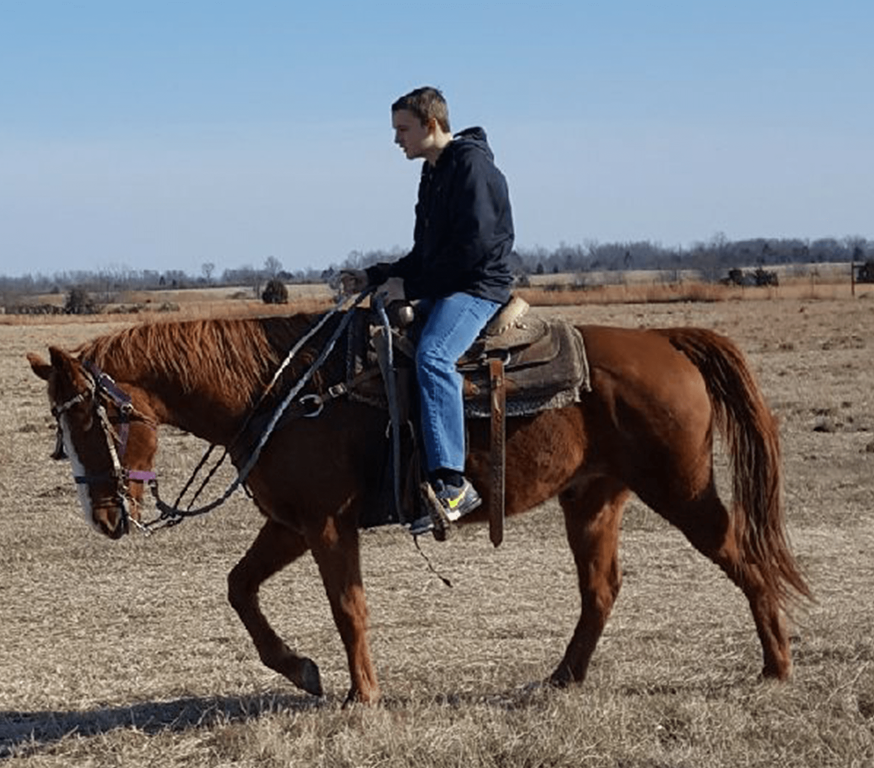 Harry was healthy enough to ride in January