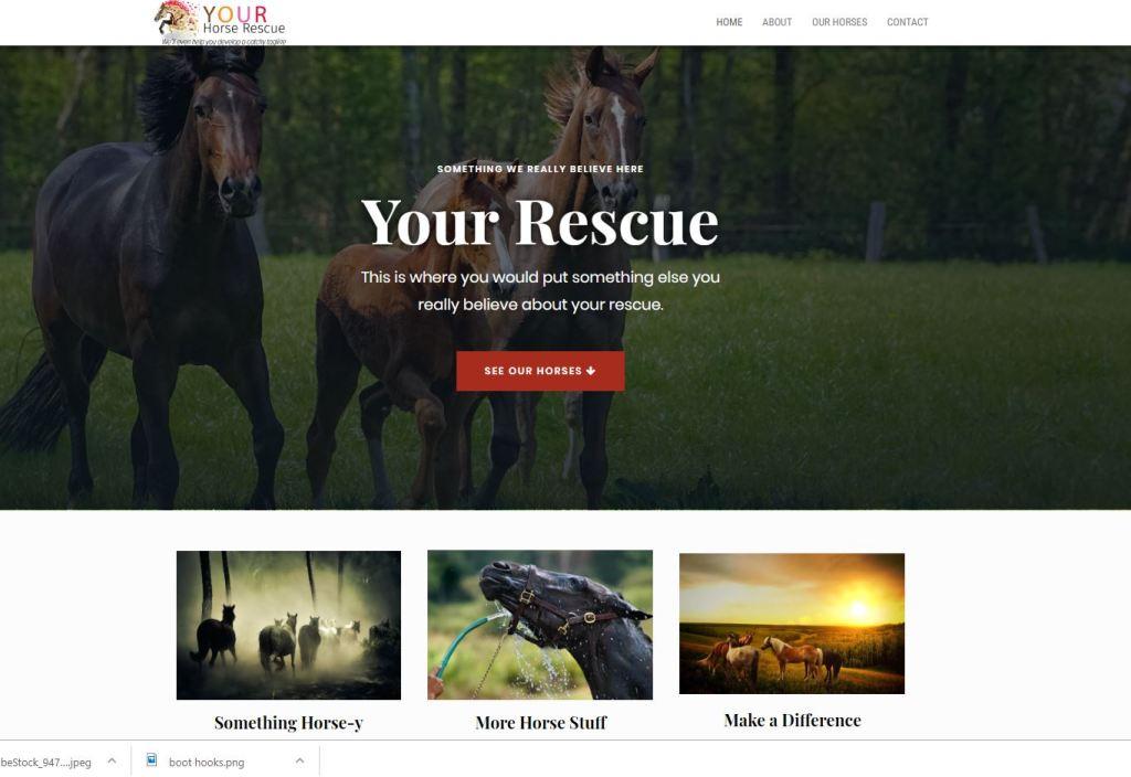 See Website Design