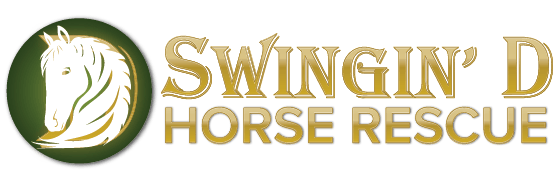 Swingin D Horse Rescue Home Page