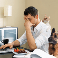 Working from home on computer