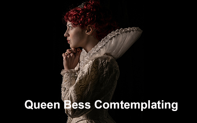 36 Queen Bess Contemplating copy