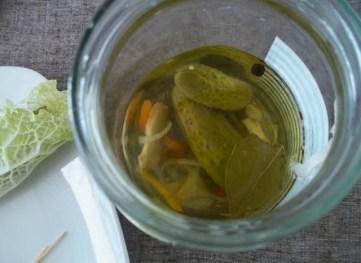 pickle-jar-view