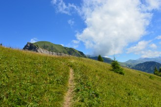 Trail to Montalin