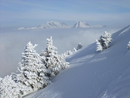 View of Säntis above the fog.