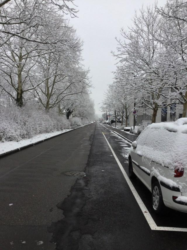 平地でも雪に見舞われた朝