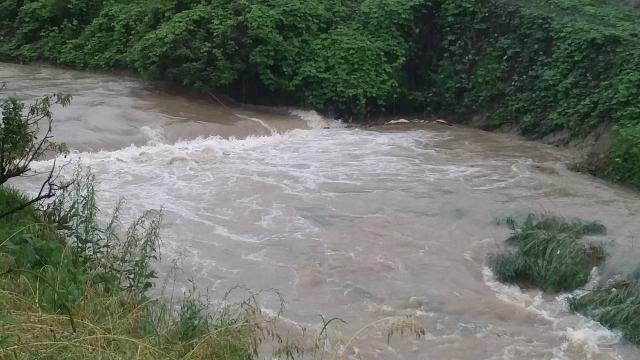 欧州各地で洪水の被害