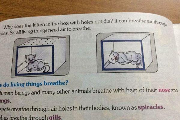 「子猫を窒息させてみましょう」インドで実際に使われている教科書の内容に驚愕