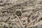 ペルーで起きた土石流、瓦礫と泥の中から女性が自力で這い上がり救助される
