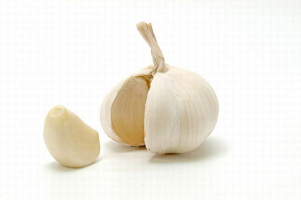 ニンニクを食べる男性の体臭は、女性にとって魅力的?:研究結果