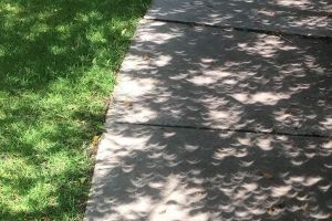 米の皆既日食で三日月の形をした影がいたるところで目撃され、SNSで話題に