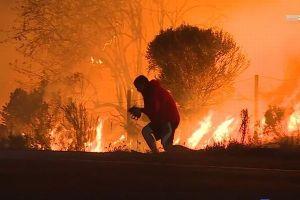 山火事の炎の中で、野生のウサギを救った青年の優しさが人々の胸を打つ