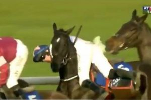 英の競馬場でまさかの展開、落馬しかけた騎手が体勢を立て直し見事優勝