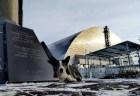 チェルノブイリ原発事故によって捨てられた犬たち、その生き様が胸を打つ