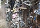 木々に無数の靴が吊るされたカナダの森が、ミステリアスだと話題に