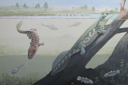 水中から地上へ進出した初期の古代生物、南極圏にも生息していたことが判明