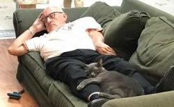 アメリカのスーパーボランティアは癒し系!猫の保護施設のテリーさんに称賛の声
