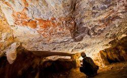 ボルネオ島の洞窟にある動物の壁画、約4万年前のものだと判明