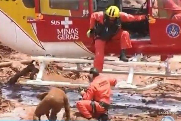 ブラジルで鉱山のダムが決壊、泥流に飲み込まれた人々をヘリが救助【動画】
