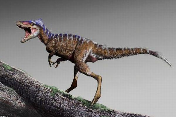 背の高さはわずか1m!超ミニサイズのティラノサウルスの化石を発見