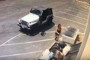 7匹の犬の赤ちゃんをビニール袋に入れ、ゴミ置き場に捨てた女が撮影される