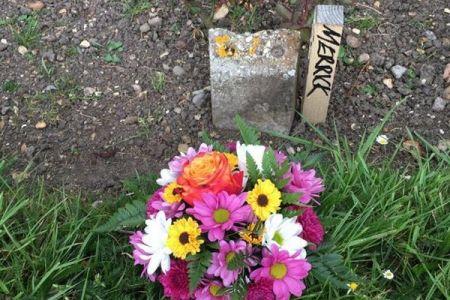 英国で『エレファント・マン』のモデルとなった男性の埋葬場所を発見か