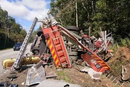 マレーシアで野生の猿の群れが襲撃、消防車が横転する大事故に