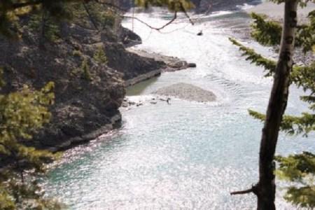 これは一体…?カナダで川を泳ぐ謎の生物の写真が撮影され話題に