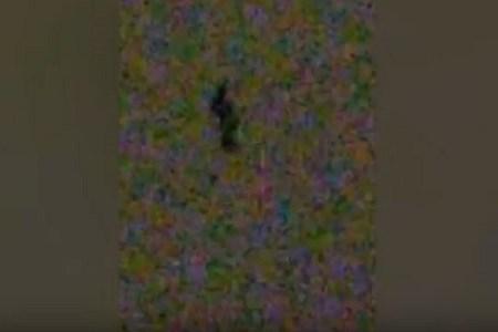 まさに鳥肌もの!米国で夜空を移動する人影のような姿が撮影される
