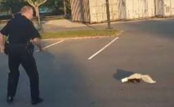 米警官がカップのはまったスカンクを救出するも、臭いの罰を受けてしまう